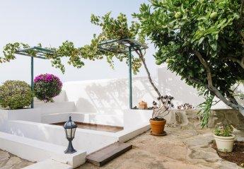 0 bedroom Villa for rent in El Rosario