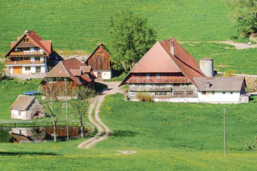 Apartment in Germany, Hornberg