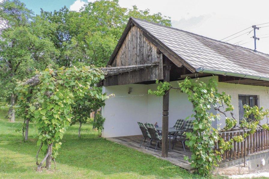 Chalet in Austria, Edlitz