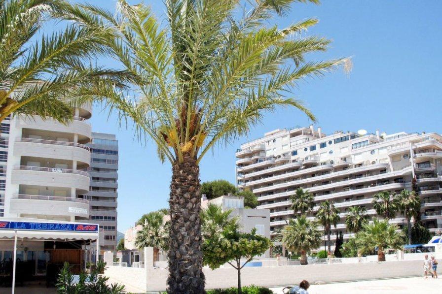 Apartment in Spain, San Gabriel