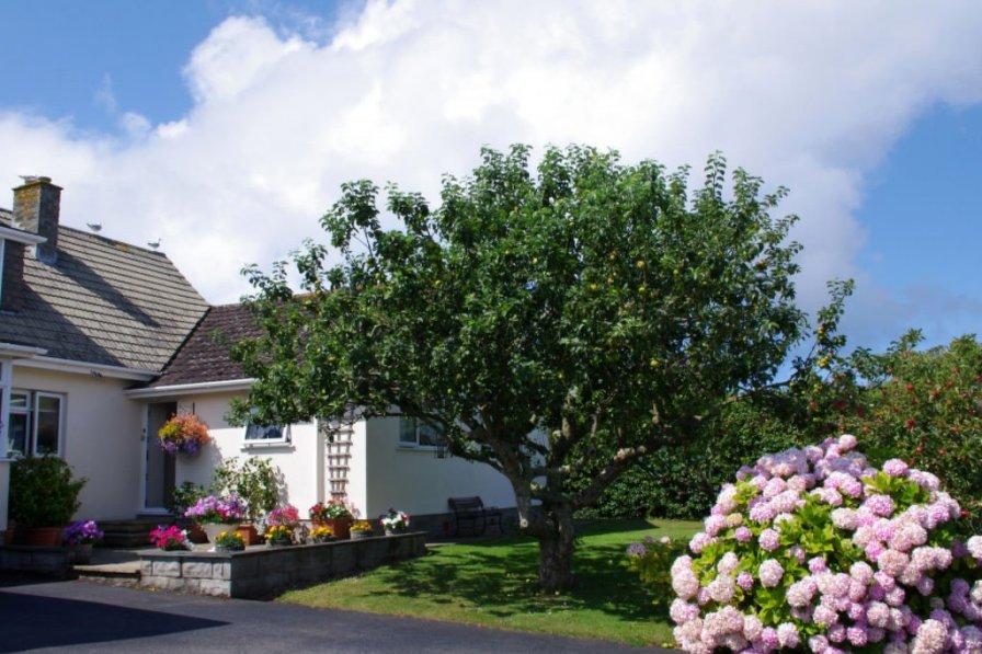 Cottage in United Kingdom, St. Merryn