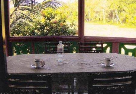 Apartment in Hikkaduwa, Sri Lanka: View across the surrounding paddy fields
