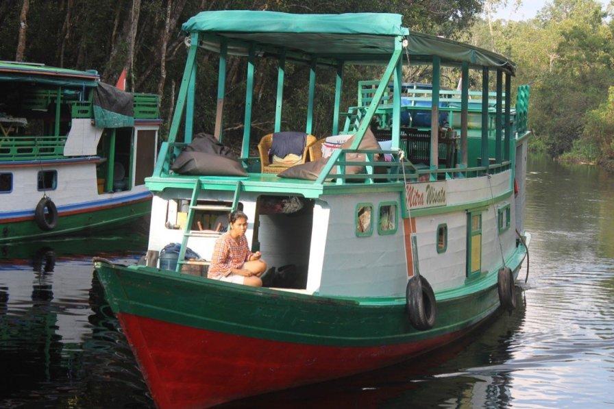 Boat in Indonesia, Central Kalimantan