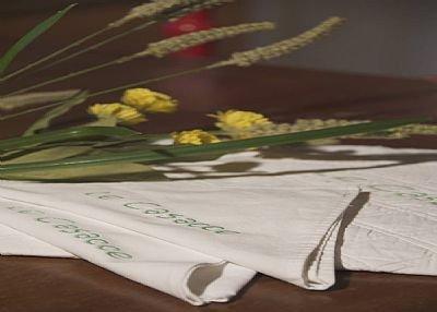 Apartment in Italy, Carmignano: TABLE