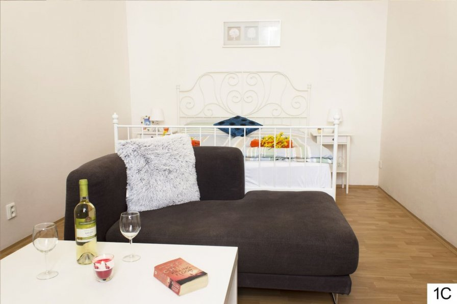 Very spacious, bright and stylish spot for couple or friends