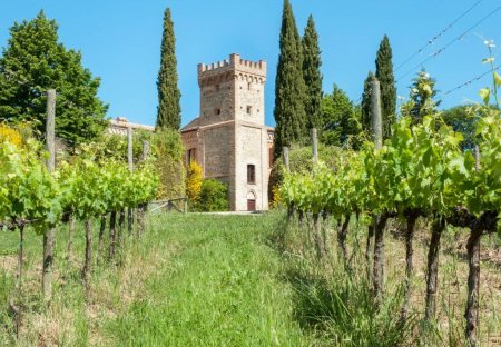 Apartment in Montefalco, Italy