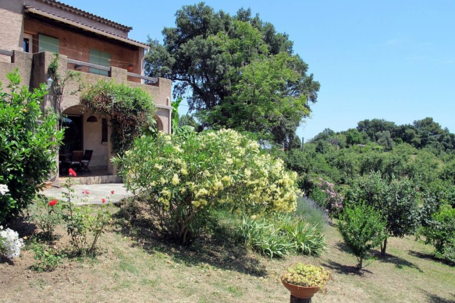 Apartment in France, Cervione