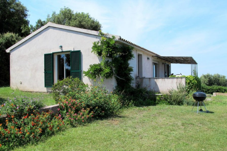 House in France, Cervione