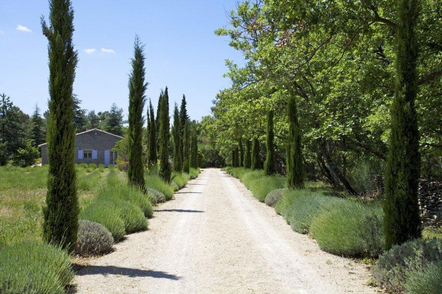 Villa Borie