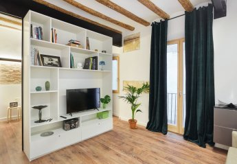 1 bedroom Apartment for rent in Gothic Quarter