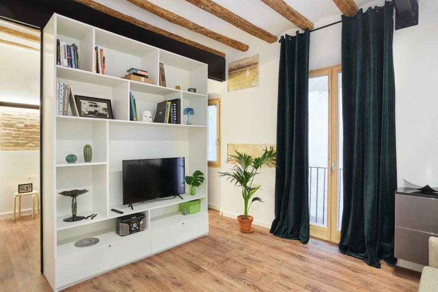 Apartment in Spain, El Raval