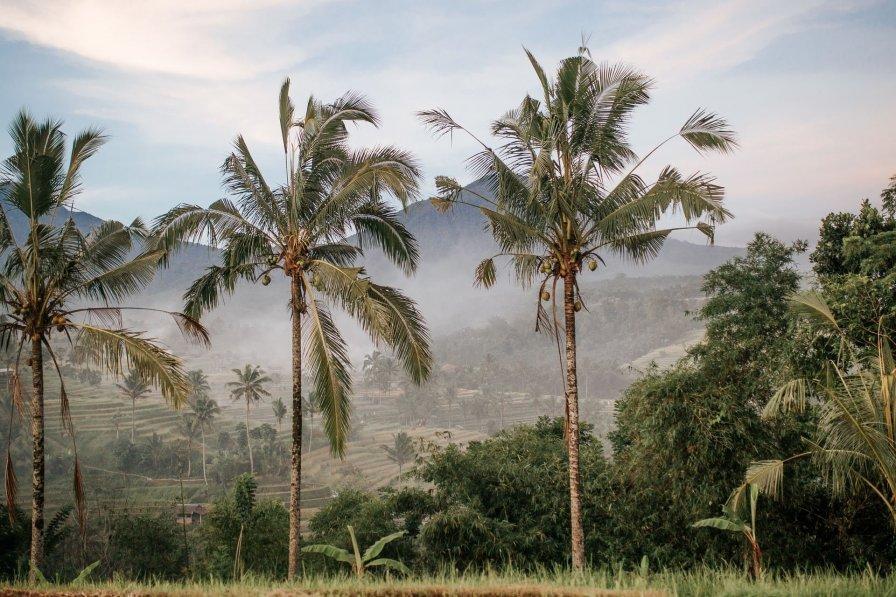 Bali Kuta villa to rent
