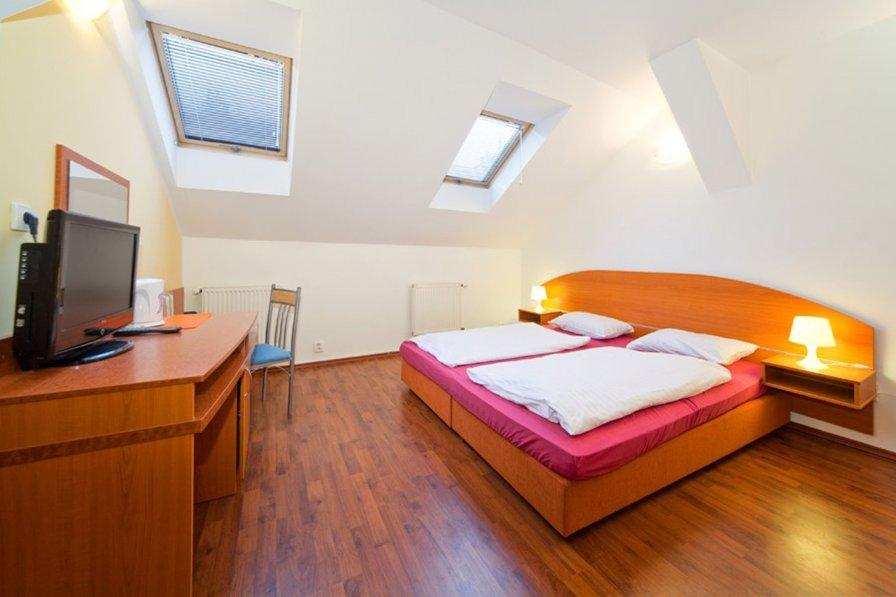 Owners abroad Cozy Room in the City center of Prague with private bath