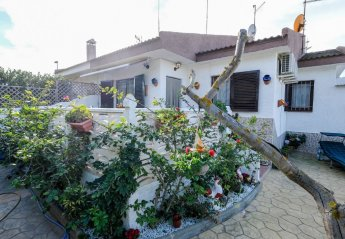 2 bedroom House for rent in Riumar
