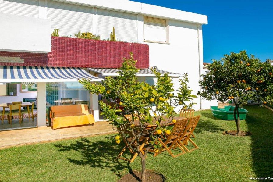 C12 - Sunshine Apartment in Luz
