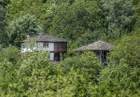 House in Stokite, Bulgaria