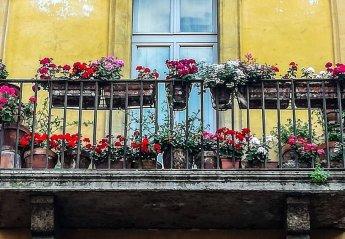 1 bedroom Apartment for rent in Trastevere