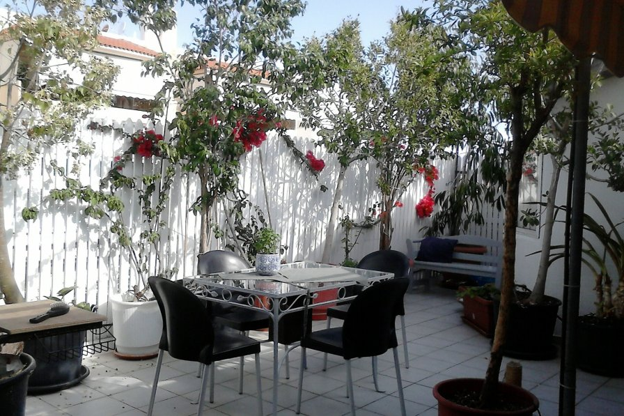 Athens roof-top garden apartment really well located