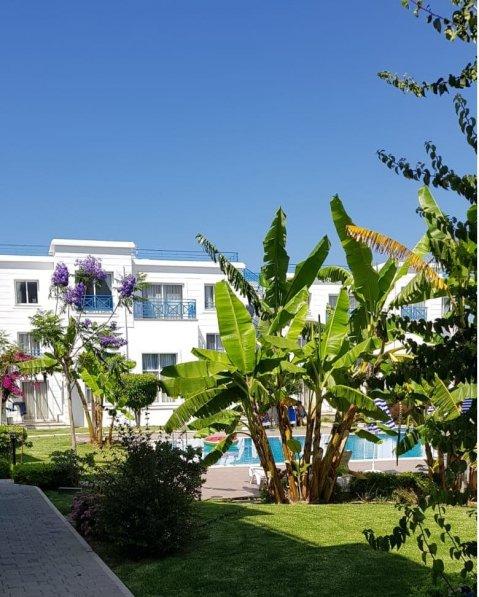 Apartment in Cyprus, Alsancak