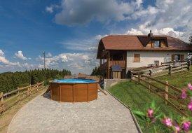 Villa in Javornik, Slovenia