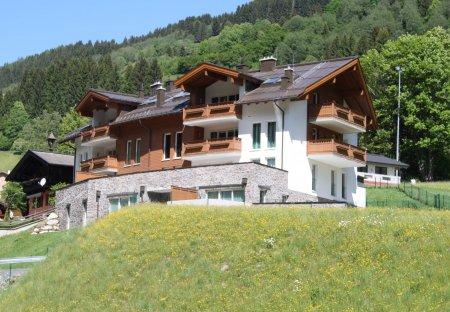 Penthouse Apartment in Viehhofen, Austria