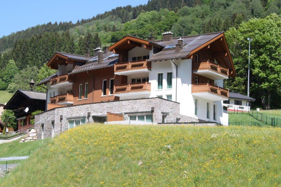 Penthouse apartment in Austria, Viehhofen