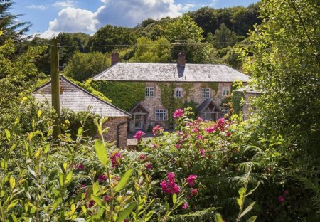 Cottage in Combe Raleigh, England