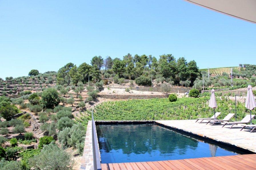 Villa in Portugal, Casal de Loivos