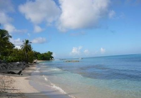 Apartment in Speightstown, Barbados: Fabulous Heywoods Beach 250M Away!!!!