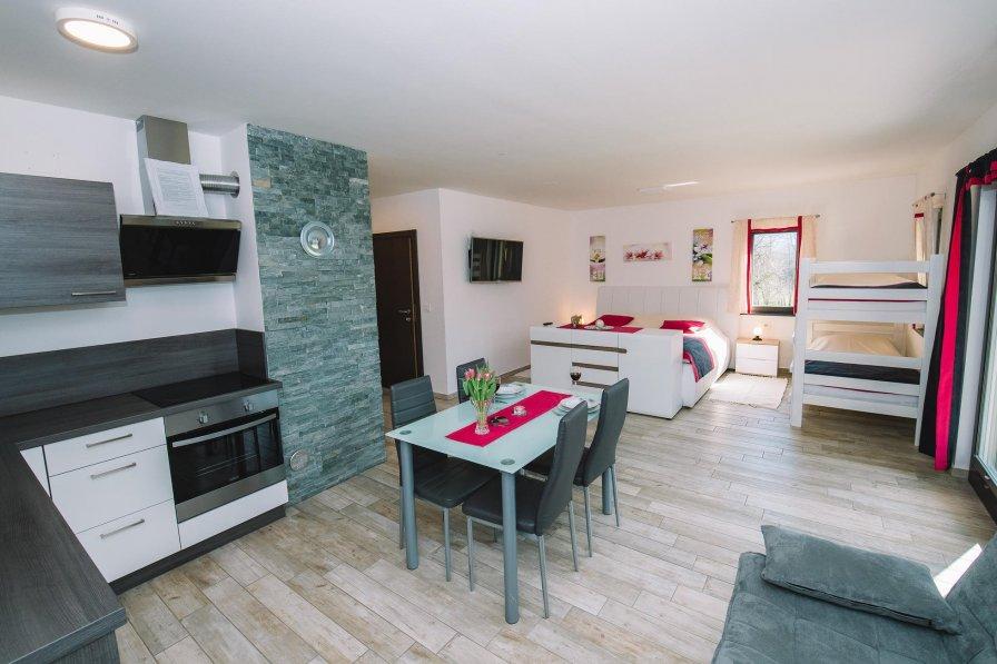 Studio apartment in Slovenia, Zasip