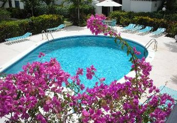 Apartment in Barbados, Rockley: Pool at Lemon Arbour