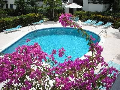 Owners abroad Studio Apartment, Rockley Golf & Country Club, fantastic location