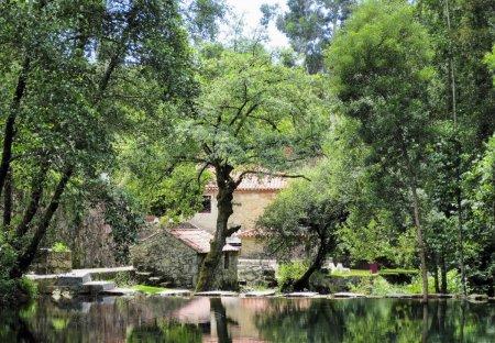 Villa in Labruja, Portugal