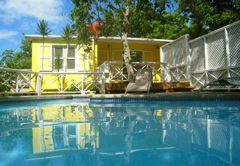 Villa in Saint Kitts and Nevis, Nevis: The Private Pool at Yellow Bird