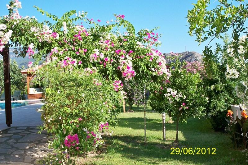 Villa in Turkey, Dalyan