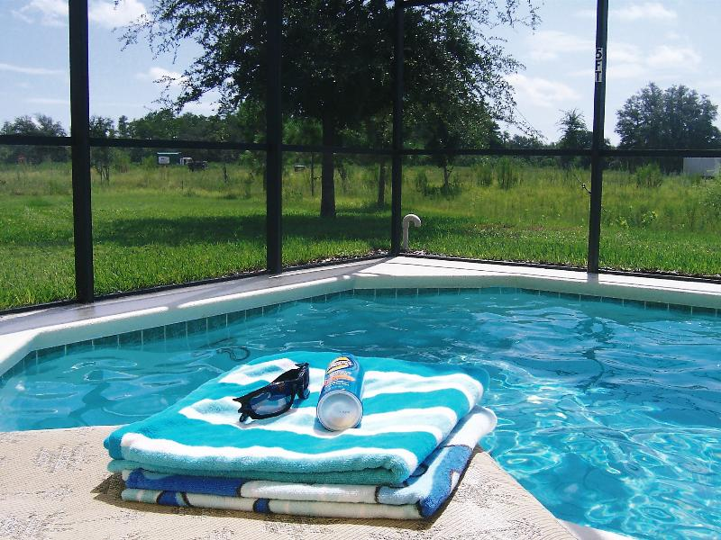Villa in USA, Silver Creek: Relax by your own pool in the Orlando sun