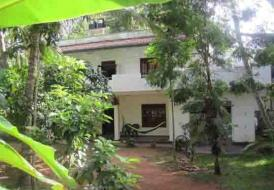Jungleside House (For Rent or Lease)