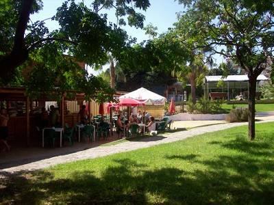 Apartment in Spain, Arroyo De La Miel: Gardens and snack bar