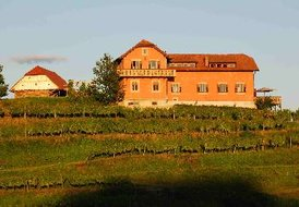 Country_house in Slovenia, Majski Vrh: Hisa Vina, on top of a Private Hill