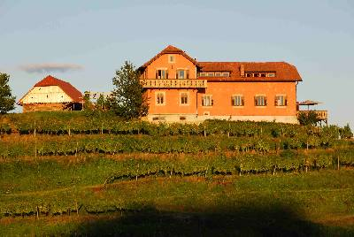 Country house in Slovenia, Haloze: Hisa Vina, on top of a Private Hill