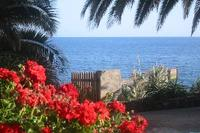 Cottage in Portugal, Ribeira Brava: Pier access