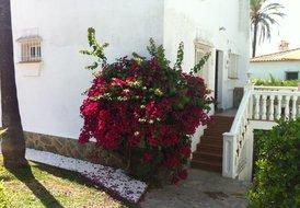 Villa Mimosa, Marbesa