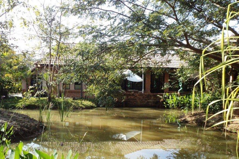 Apartment in Thailand, Chiang Mai