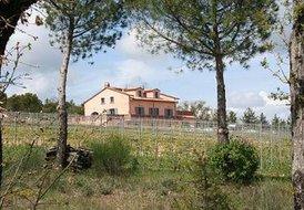 Montepulciano - The Febo Farm