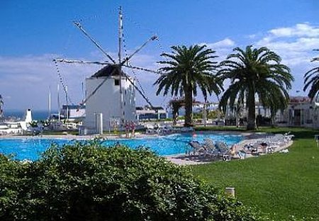 Apartment in Albufeira, Algarve: The relaxing quiet Pool area