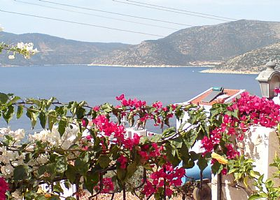 Apartment in Turkey, Kalkan: View from the pool terrace