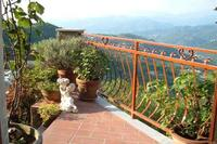 Village_house in Italy, Lunigiana