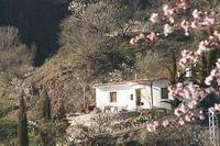 Finca in Spain, Alpujarras: Cuesta Vinas