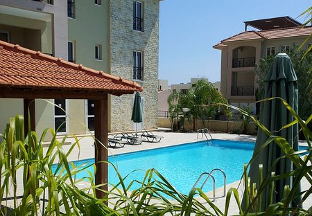 Apartment in Mazotos, Cyprus: The Pool