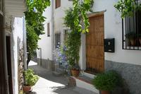 Village_house in Spain, Alpujarras: the front entrance